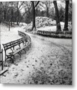 Central Park 3 Metal Print by Wayne Gill