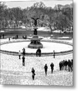 Central Park 5 Metal Print by Wayne Gill
