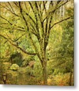 Central Park In Autumn Texture 5 Metal Print