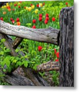 Central Park Shakespeare Garden New York City Ny Wooden Fence Metal Print