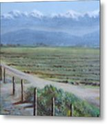 Central Valley At Tulare Metal Print