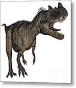 Ceratosaurus Dinosaur Roaring Metal Print