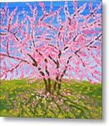 Cercis Tree, Oil Painting Metal Print