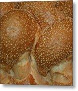 Challah Bread Metal Print