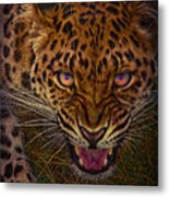 Chance Encounter Metal Print