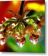 Chandelier From The Rain Drops Metal Print