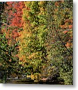 Changing Colours Of The Fall Metal Print