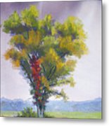 Changing Weather Changing Tree Metal Print by Christine Camp