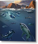 Channel Islands Sharks Metal Print