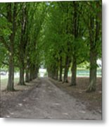Chantilly France Street Scenes Metal Print