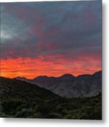 Chaparral Dreams Metal Print
