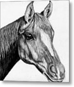 Charcoal Horse Metal Print