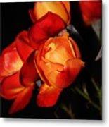 Charisma Roses 4 Metal Print