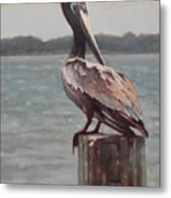 Charleston Pelican Metal Print