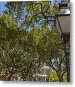 Charleston Through The Tree's Metal Print