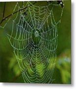 Charlotte's Web Metal Print