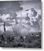 Chasing Clouds Again In Black And White  Metal Print