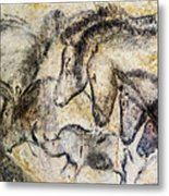 Chauvet Horses Aurochs And Rhinoceros Metal Print