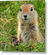 Check Out My Good Side Metal Print