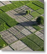 Checker Board Fields Metal Print