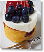Cheese Cream Cake With Fruit Metal Print