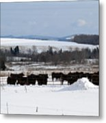 Cheese Makers With A View Metal Print