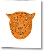Cheetah Head Drawing Metal Print