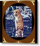 Cheetah Lean And Mean Metal Print