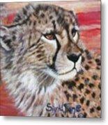 Blaa Kattproduksjoner       Cheetahs Face Metal Print