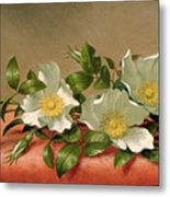 Cherokee Roses Metal Print by Martin Johnson Heade