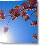 Cherries In The Sky Metal Print