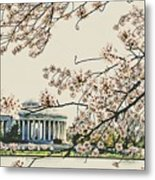 Cherry Blossom Tidalbasin View Metal Print