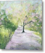 Cherry Blossom Tree Central Park Bridle Path Metal Print