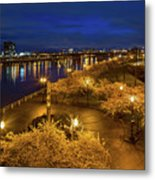Cherry Blossom Trees At Portland Waterfront Park During Blue Hou Metal Print
