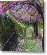 Cherry Blossom Walk Metal Print