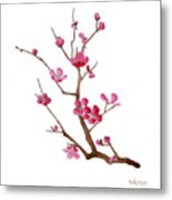Cherry Blossoms 2f Metal Print