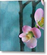 Cherry Blossom Bokeh Metal Print