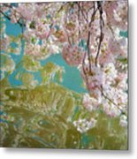 Cherry Blossoms Close Up Six Metal Print