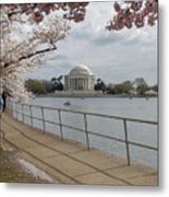 Cherry Blossoms With Memorial Metal Print