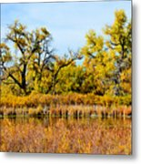 Cherry Creek Pond In Autumn Metal Print