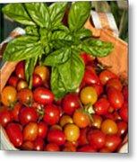 Cherry Tomato Harvest Metal Print