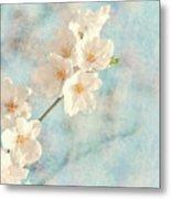 Cherry Tree Blossom Metal Print