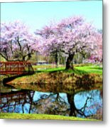 Cherry Trees In The Park Metal Print