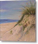 Chesapeake Bay Dune Metal Print