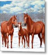 Chestnut Horses In Winter Pasture Metal Print