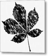 Chestnut Leaf Metal Print