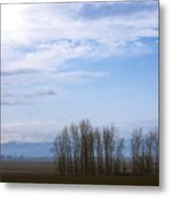 Chewelah Valley Metal Print