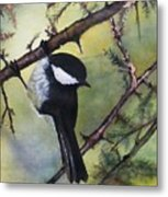 Chickadee Autumn Metal Print