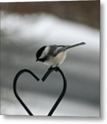 Chickadee On Heart Metal Print