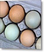 Chicken Eggs In Carton Metal Print